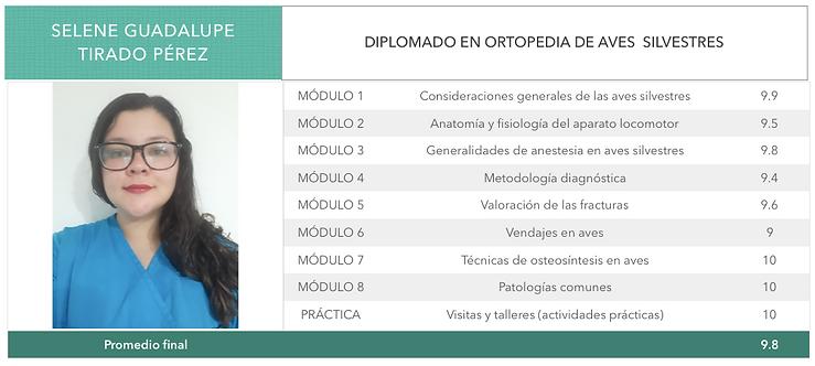 ORTOPEDIA-TIRADO-PEREZ.png