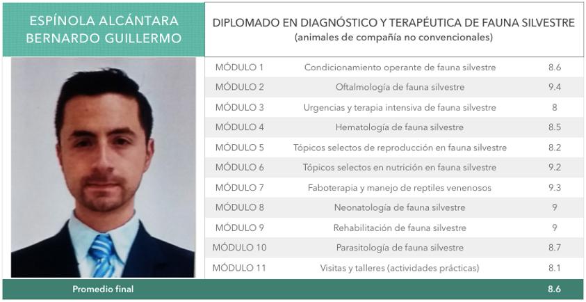 Espinola_Alcantara.png