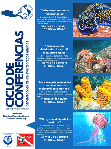 generalidades de los invertebrados marin