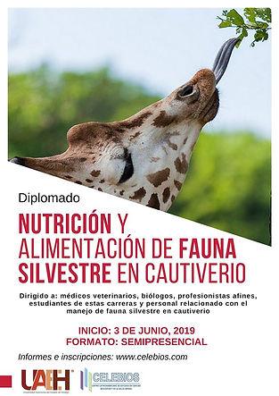Poster Nutricion.jpg