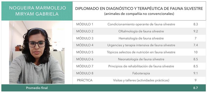Nogueira_Marmolejo.png