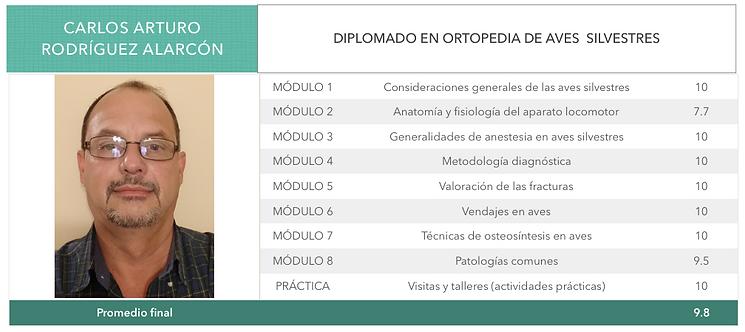 ORTOPEDIA-RODRIGUEZ-ALARCON.png