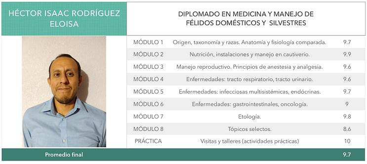 RODRIGUEZ_ELOISA.png