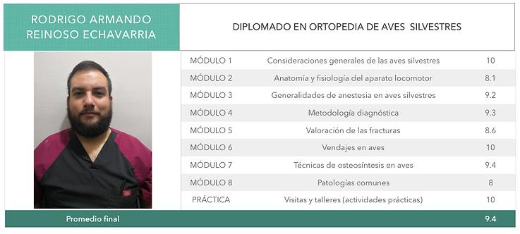 ORTOPEDIA-REINOSO-ECHAVARRIA.png