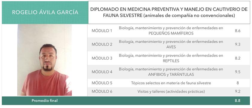 Boleta_Rogelio.png