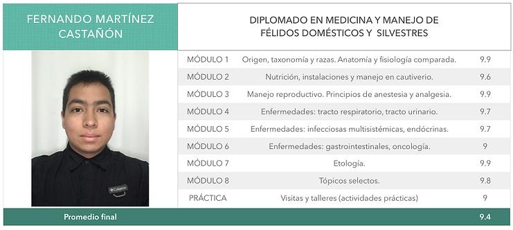 MARTINEZ_CASTAÑON.png
