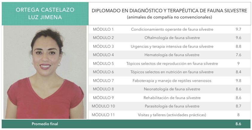 Ortega_Castelazo.png