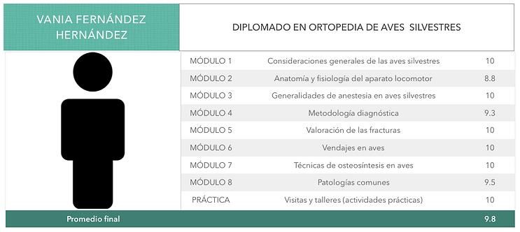 ORTOPEDIA-FERNANDEZ-HERNANDEZ.png