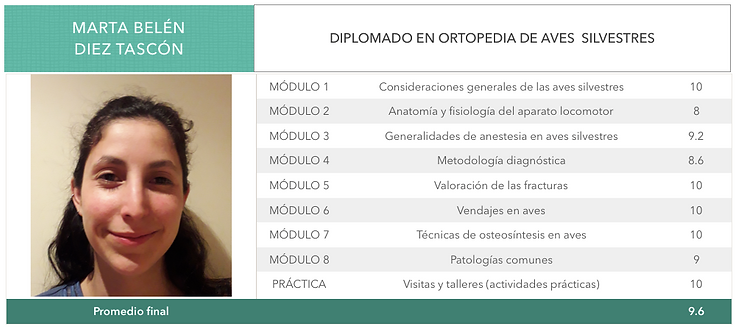 ORTOPEDIA-DIEZ-TASCON.png