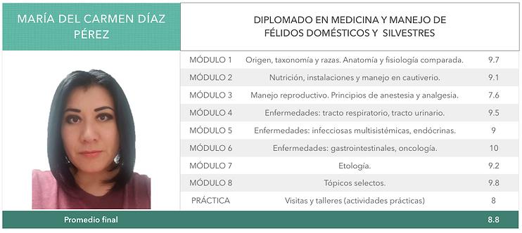 DIAZ_PEREZ.png