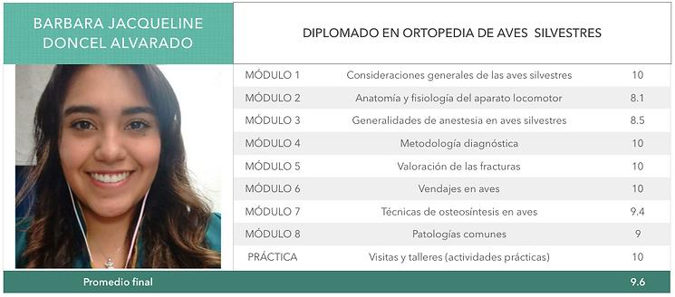 ORTOPEDIA-DONCEL-ALVARADO.png
