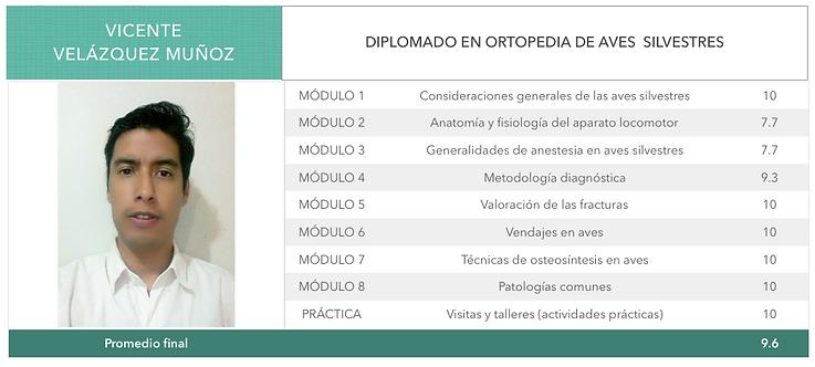 ORTOPEDIA-VELAZQUEZ_MUÑOZ.png