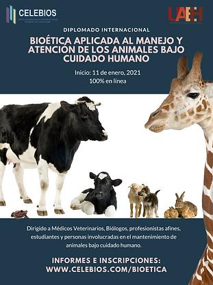Poster Bioetica.png