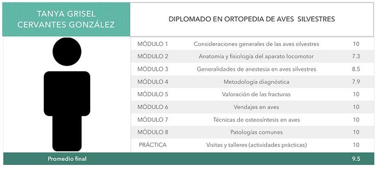 ORTOPEDIA-CERVANTES-GONZALEZ.png