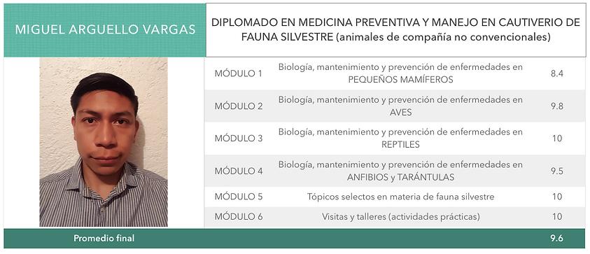 Boleta_Miguel.png