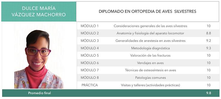 ORTOPEDIA-VAZQUEZ-MACHORRO.png