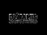 Dynamis.png