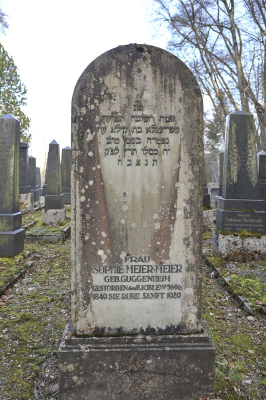 Sophie Meier-Meier