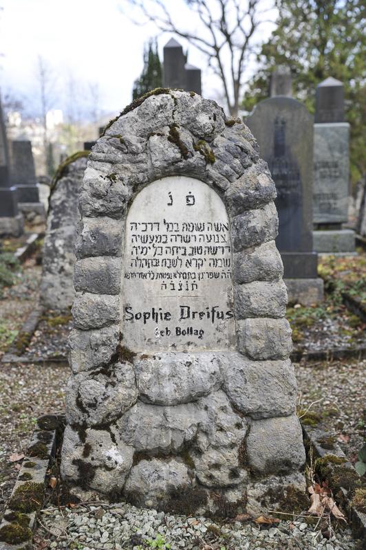 Sophie Dreifus