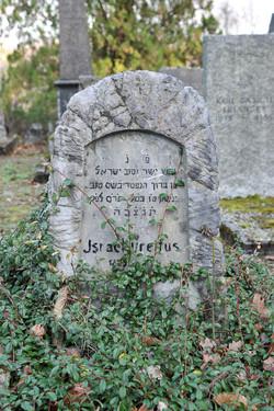Jsrael Dreifus