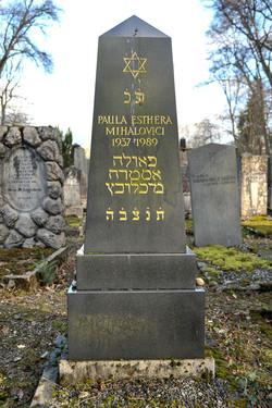 Paula Esthera Mihalovici