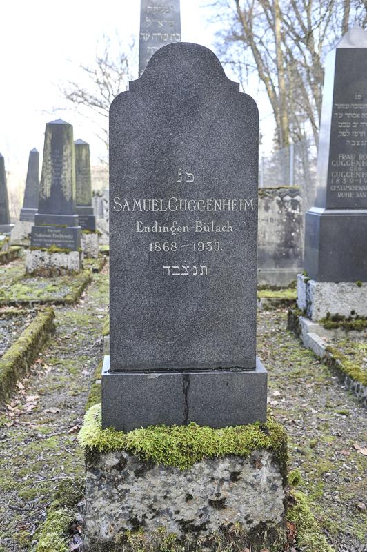 Samuel Guggenheim 2
