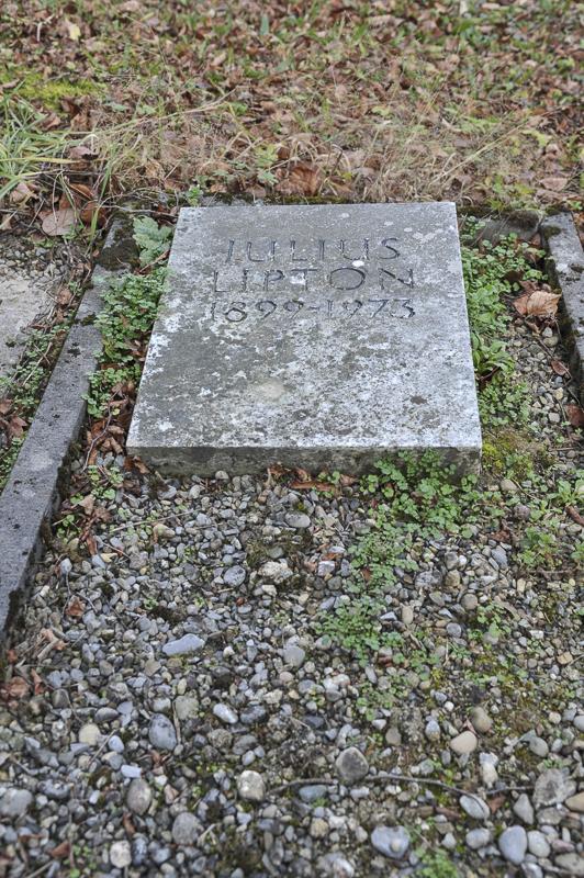 Julius Lipton