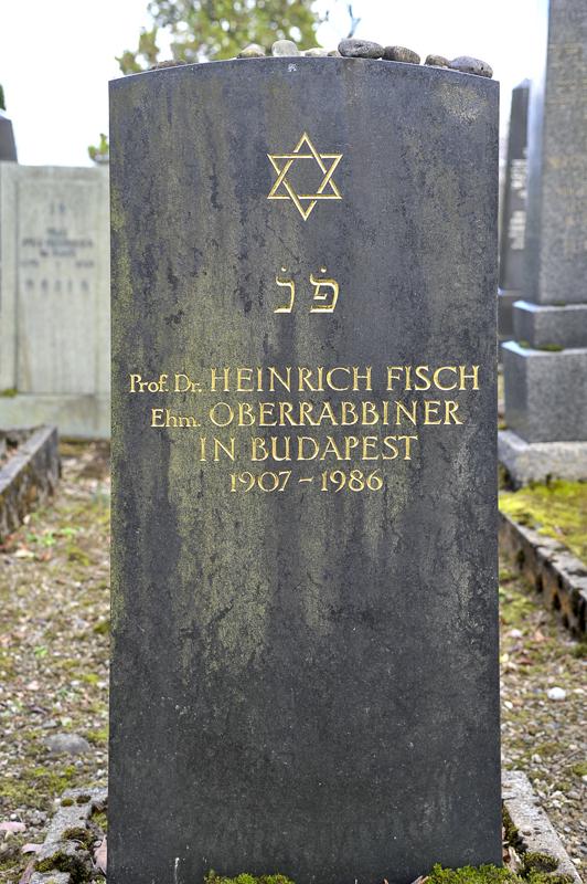 Prof. Dr. Heinrich Fisch