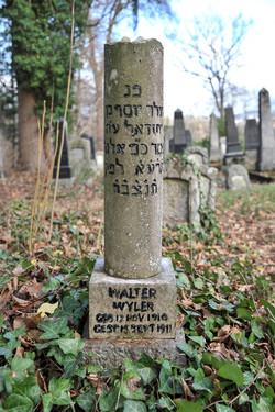 Walter Wyler