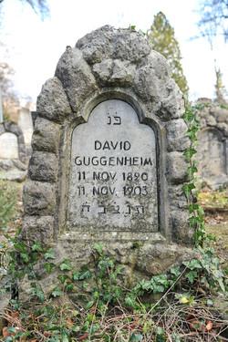 David Guggenheim