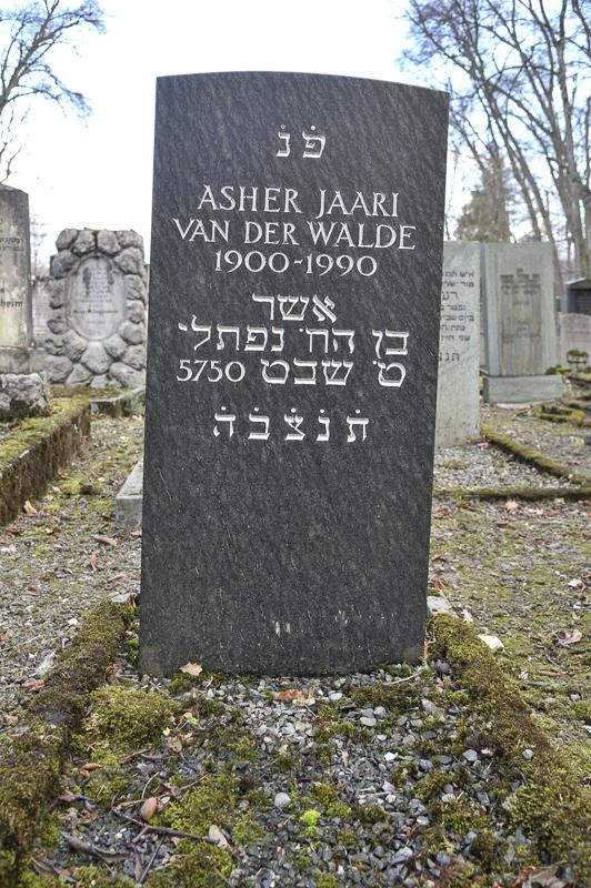 Asher Jaari van der Walde