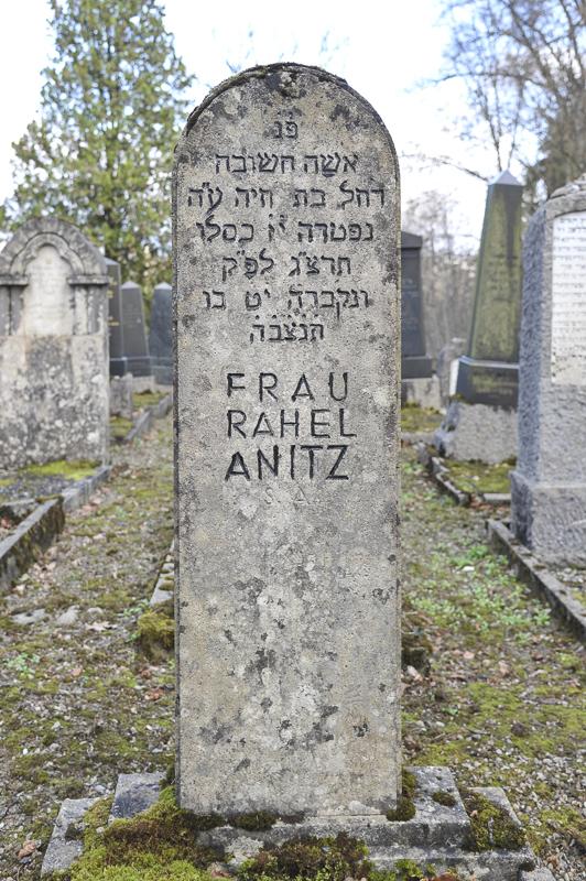 Rahel Anitz