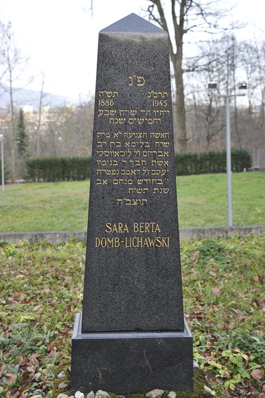 Sara Berta Domb-Lichawski