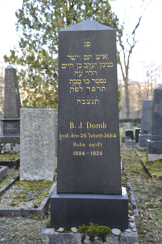 B. J. Domb