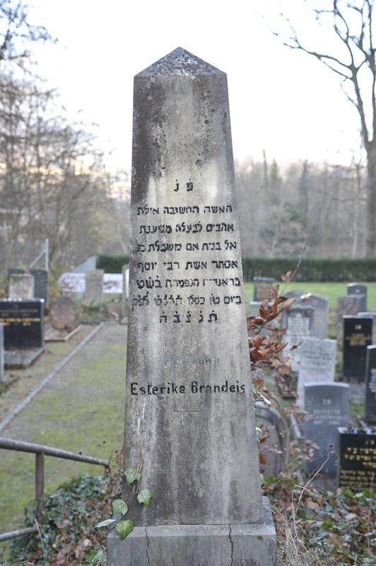 Esterika Brandeis