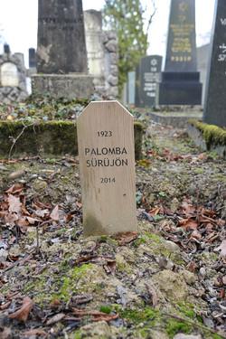 Paloma Surujon