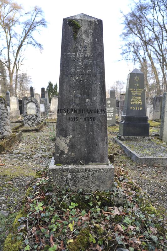 Joseph Brandeis