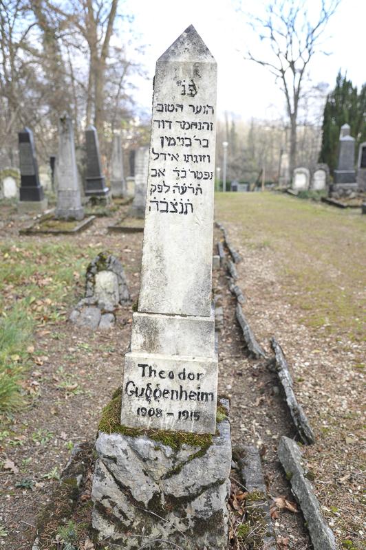 Theodor Guggenheim