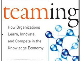 Literature of Leadership -  Teaming: How Organizations Learn, Innovate, and Compete in the Knowledge