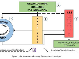 The Renaissance Foundry: An Effective Strategy to Drive Innovation in Academic Organizations