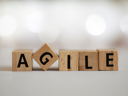Tip 121:  Agile Organizations and Leadership