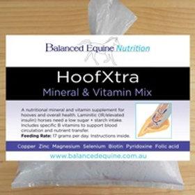 HOOFXTRA Mineral Mix - Small 2.9kgs