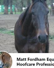 Matt Fordah Equine Hoofcare.png