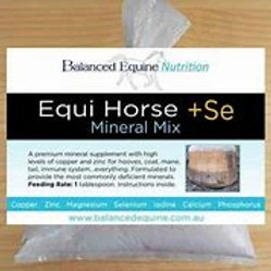 EQUIHORSE + SE Mineral Mix - Large 4.9kgs