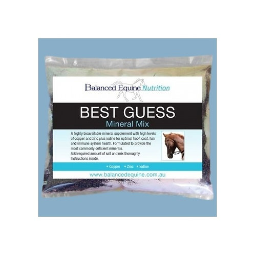 BEST GUESS MINERAL MIX - Small 1kg