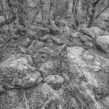 Tobe Canyon, Davis Mountains Preserve