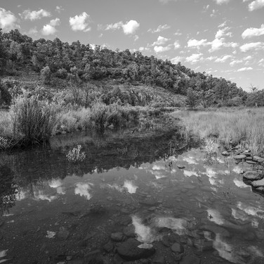 Madera Creek, Davis Mountains