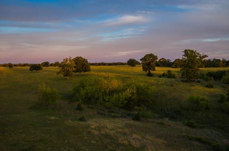 twilight landscape 1.jpg