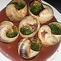 ESCARGOTS - 6 ( Snails)