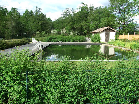 Ecologisch zwembad met terrassen petits-fours Busserolles Frankrijk